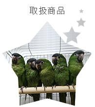 BIRD SHOPくるみの取扱商品
